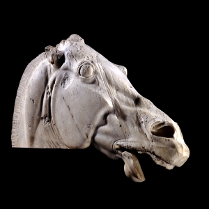 Elgin Marbles, Head of a Horse of Selene from the British Museum Collections. http://www.britishmuseum.org/explore/highlights/highlight_image.aspx?image=an18006.jpg&retpage=18108